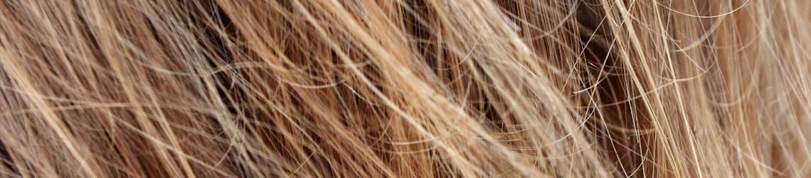 Soin Cheveux Corse - Corsica Beauty